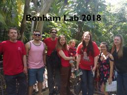 Bonham Lab 2018